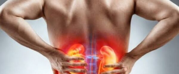 Prevention And Cure Of Kidney Stones Through Ayurveda